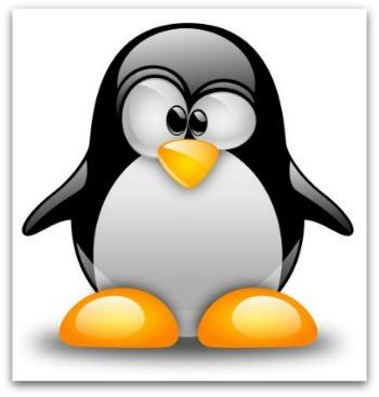Pulizie ecologiche possiblili con progetto pinguino for Babybazar scorze