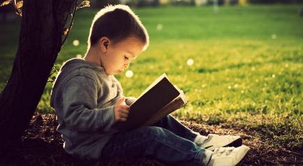 Libri usati per l 39 estate i classici per bambini for Babybazar scorze