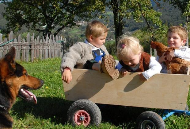 cosa fare con i bambini in estate