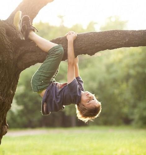arrampicarsi sugli alberi