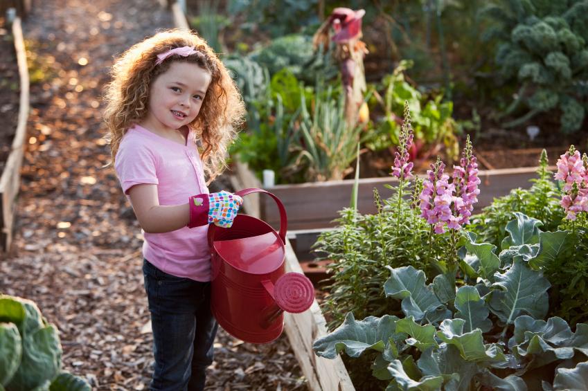 coltivare orto con i bambini